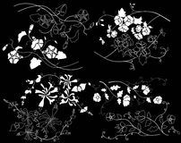 Design element on a black background. White design element flowers on a black background Stock Photos