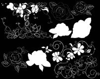 Design element on a black background. White design element flowers on a black background Royalty Free Stock Image