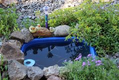 Little pond in the Garden Royalty Free Stock Photos