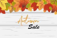 Autumn Sale background vector with fall leaves in front of white wood background stock illustration