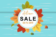 Autumn Sale banner in circle background vector with fall leaves and turquoise wood background. This design element suitable for shopping sale, poster, leaflet stock illustration