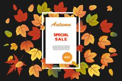 Autumn Sale banner in white frame, using black background with fall leaves. This design element suitable for shopping sale, poster, leaflet or banner in Autumn royalty free illustration