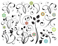 Design elements. Collection of floral design elements Stock Images