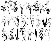 Design elements. Collection of floral design elements Stock Photos