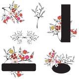 Design elements. Set of floral design elements Royalty Free Stock Photo