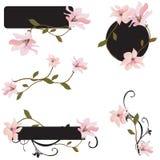 Design elements. Set of design elements with magnolias Stock Photo