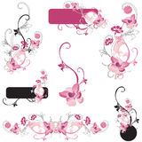 Design elements. Set of floral design elements Royalty Free Stock Photography