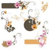 Design elements. Set of floral design elements Stock Photos