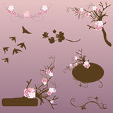 Design elements. Set of design elements with flowers Royalty Free Stock Photography