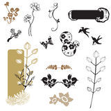 Design elements. Set of design elements with floral patterns Royalty Free Stock Images