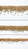 Design elements. For headlines or menu decoration. Border design. Granules in line, useful as menu royalty free stock photo