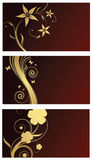 Design elements. With gold flowers Stock Photos