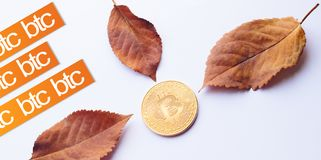 Design elements for autumn. Virtual Coin Bitcoin in the center of fallen autumn leaves with texts Stock Images