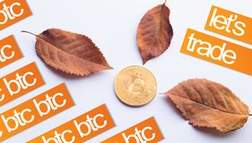 Design elements for autumn. Virtual Coin Bitcoin in the center of fallen autumn leaves with texts Stock Photography