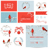 Design Elements - Christmas Birds Theme Royalty Free Stock Image