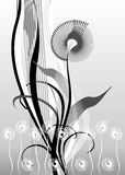 Design elements, floral. Vector design elements, floral, black, white, grey Stock Illustration