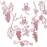 Design elements of grapes Stock Images