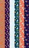 Design elements patterns borders. Vertical Stock Photo