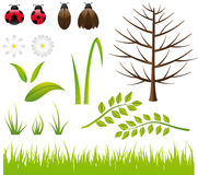 Design Elements - Spring- Nature. Design Elements - Nature - bugs, leaves, flowers, tree, grass Royalty Free Stock Images