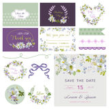 Design Elements - Wedding Flower Lily Theme Royalty Free Stock Photography