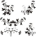 Design ellements. Black & white floral design ellements Royalty Free Stock Images