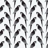 Design för bakgrund för papegojavektorkonst för tyg och dekor vektor illustrationer