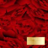 Design för bakgrund för röda rosor för vattenfärg för vektor abstrakt Royaltyfria Foton