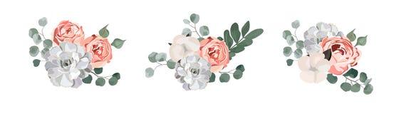 Design för blom- bukett: rosbomull för trädgårds- rosa färger, suckulent, sidor för eukalyptusfilialgrönska stock illustrationer