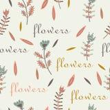 Design för etikett för blommamodell sömlös dekorativ Fotografering för Bildbyråer