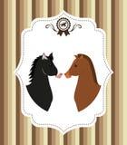 Design för hästridning Arkivfoton