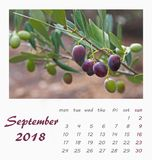 Design 2018 för reklamblad för mall för Juli skrivbordkalender valencia Arkivbilder