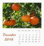 Design 2018 för reklamblad för mall för Juli skrivbordkalender valencia Royaltyfri Bild