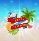 Design för sommarfestivalaffisch med kokosnöten, coctail, palmträdsidor Fotografering för Bildbyråer