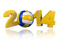 Design för strandvolleyboll 2014 Royaltyfri Fotografi