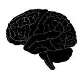 Design för symbol för symbol för hjärntecknad filmvektor Härlig illustration Arkivbilder