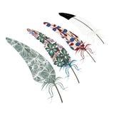 Design för textur för vektorabstrakt begreppfjäder Royaltyfri Bild