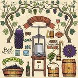 Design för Winemaking för illustrationer för färg för vektorvininfographics Arkivfoton
