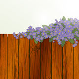 Design floral Fotografia de Stock Royalty Free