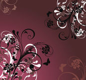 Design floral background Stock Photography