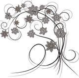 Design floral do vintage do ornamento. ilustração royalty free