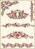 Design floral elements Stock Photo