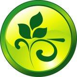 Design floral green button Royalty Free Stock Photos