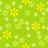Design floral seamless pattern Royalty Free Stock Photo