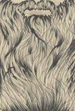Design för skäggsidabakgrund Royaltyfria Bilder