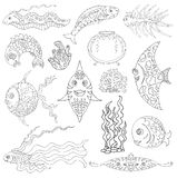 Design graphic set with fish, aquarium and sea weed Stock Photography