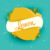 Design Ideas for packaging, labels, covers, badges Stock Images