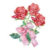 design illustration space 与弓的水彩花束英国兰开斯特家族族徽在白色背景 库存例证