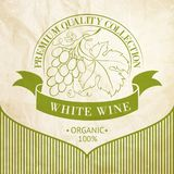 Design of label for wine. Stock Images