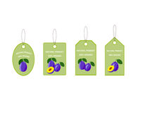 Design Labels with Ripe Tasty Plum Royalty Free Stock Image