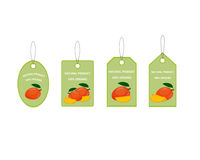 Design Labels with Ripe Yummy Mango. For the company in vector format Royalty Free Stock Photos